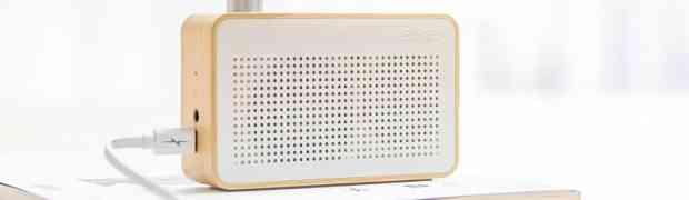 Vantaggi e svantaggi delle casse Bluetooth